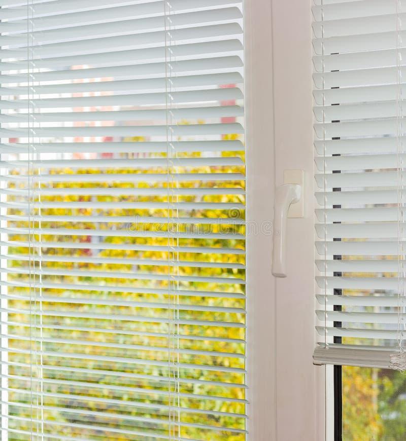 Weiße Jalousien auf Plastikfenster am Herbsttag lizenzfreie stockfotografie