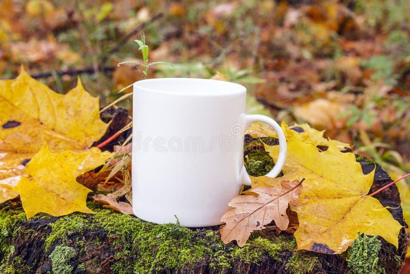 Weiße Kaffeetasse auf einem Stumpf mit gefallenen Blättern im Herbstwald stockbilder