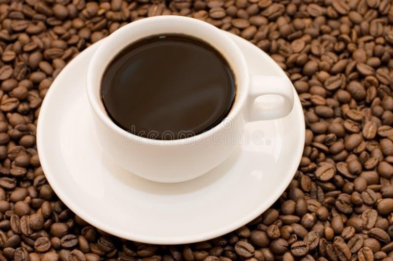 Weiße Kaffeetasse gefüllt mit Kaffeebohnen stockfotografie