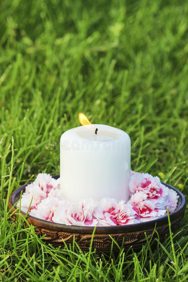 Weiße Kerze unter Gartennelkenblumen lizenzfreie stockfotos