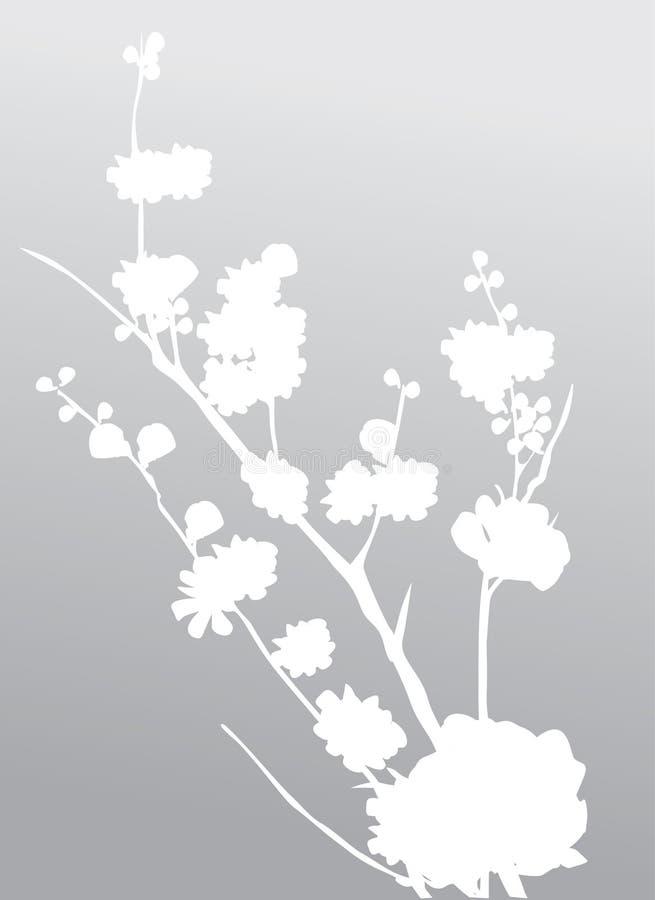 Weiße Kirschbaumblumen lizenzfreie abbildung