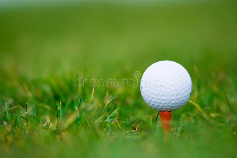 Weiße Kugel des Golfs lizenzfreie stockbilder