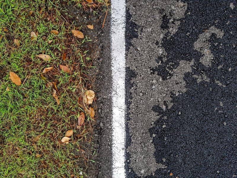 Weiße Linie trennt Zivilisation und natürliches aus einander heraus lizenzfreie stockfotografie