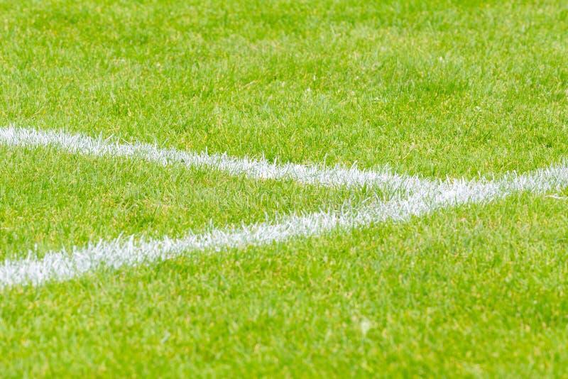 Weiße Linien auf Sportfeld lizenzfreie stockfotografie