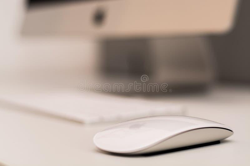 Weiße Maus Apples mit unscharfer Tastatur im Hintergrund stockbild