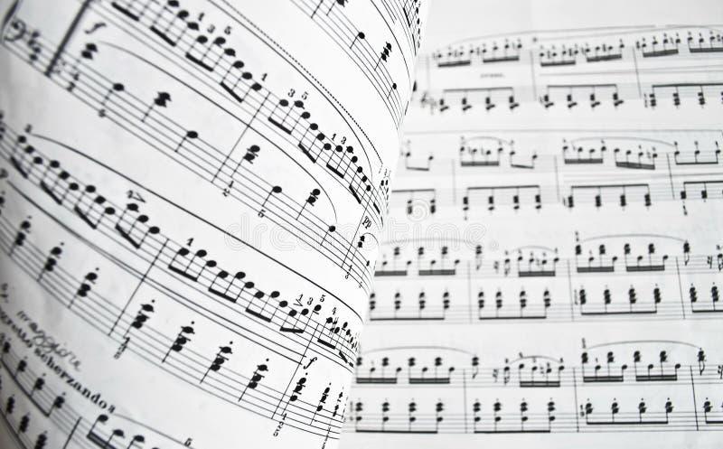 Weiße musikalische Kerbe lizenzfreies stockbild