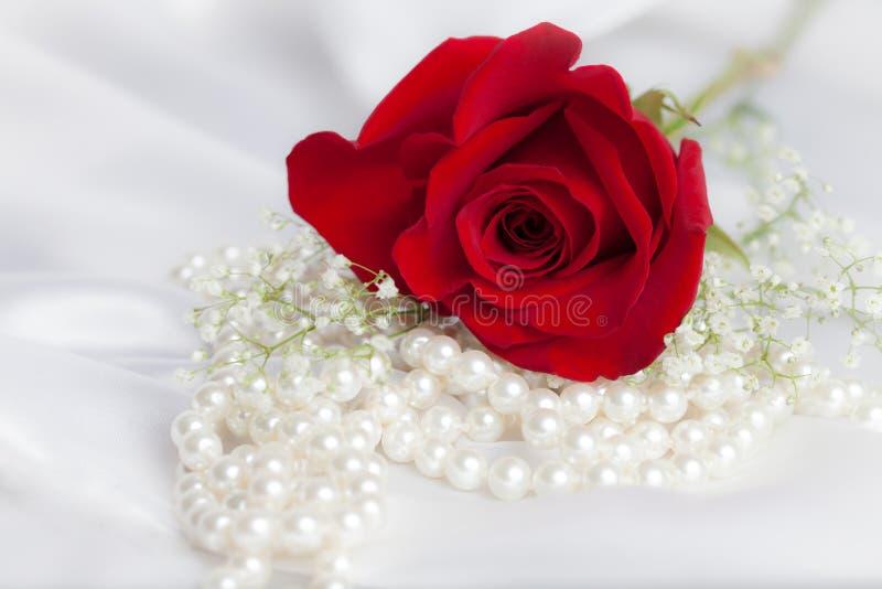 Weiße Perlen und rote Rose stockbilder