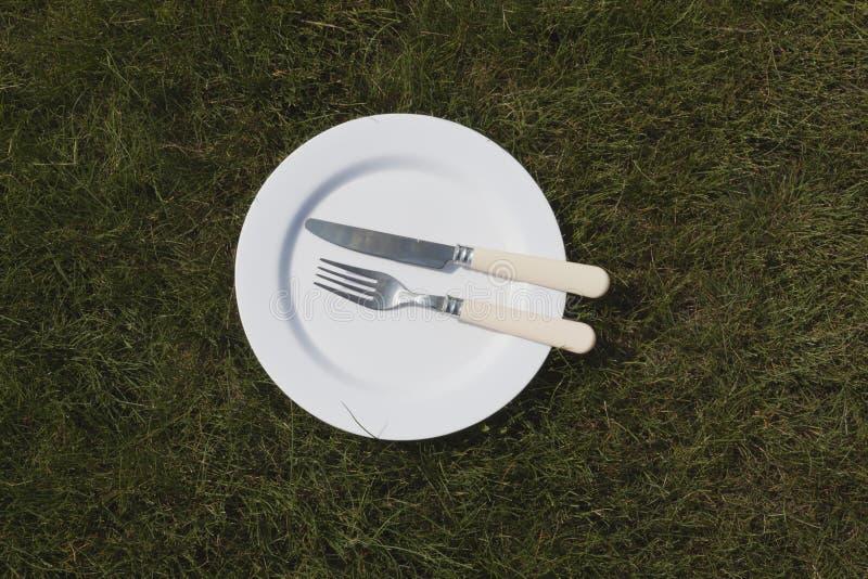 Weiße Platte auf Gras lizenzfreie stockfotografie