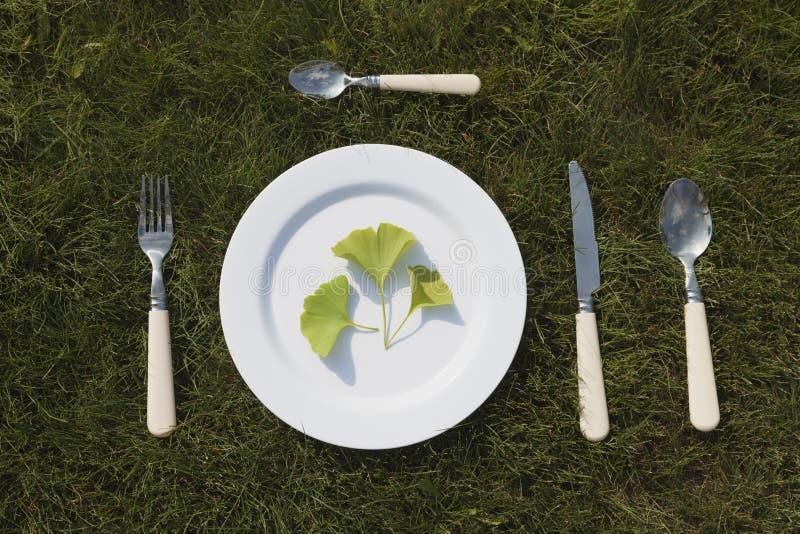 Weiße Platte auf Gras stockfotografie