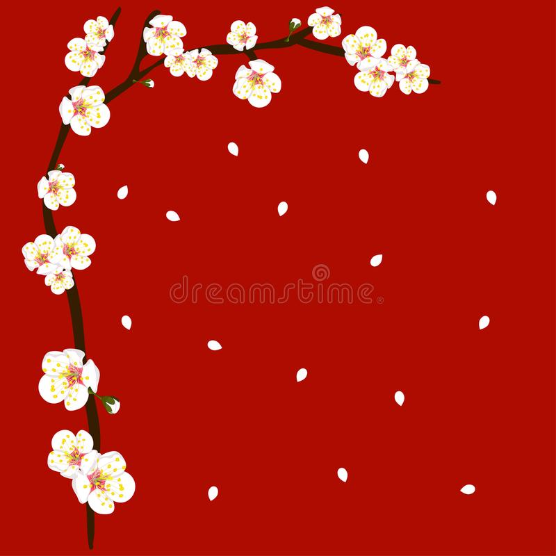 Weiße Plum Blossom Flower Border auf rotem Hintergrund Auch im corel abgehobenen Betrag lizenzfreie abbildung