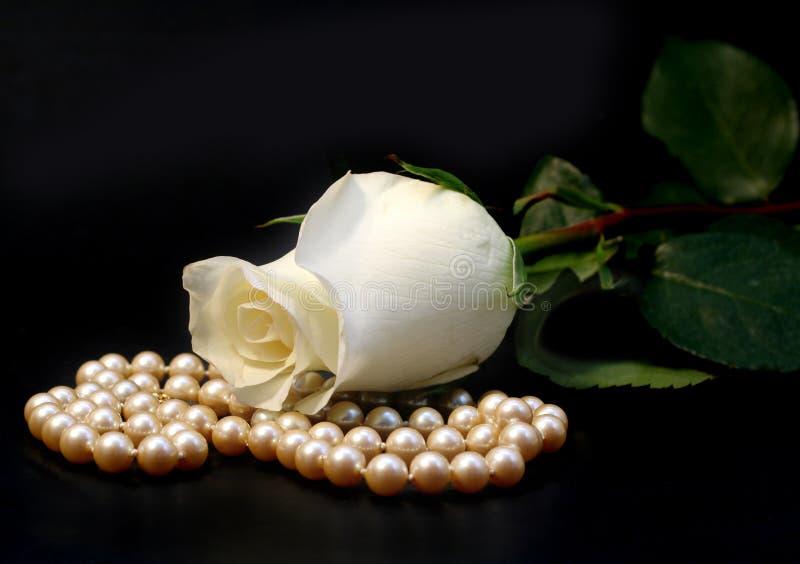 Weiße Rose und Perlen lizenzfreie stockfotografie