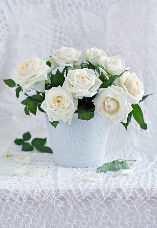 Weiße Rosen lizenzfreie stockfotografie