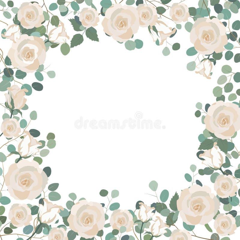 Weiße Rosen-Blumen Und Silberner Dollar Eukalyptusrahmen Gruß ...