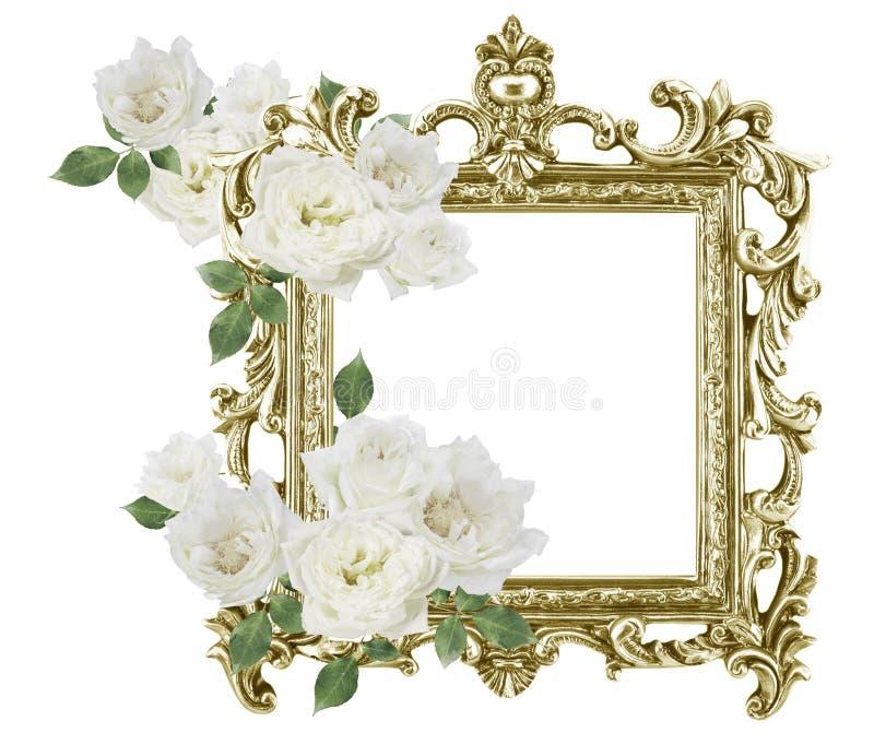 Weiße Rosen des antiken goldenen Rahmens herum lokalisiert auf weißem backgr stockfotos
