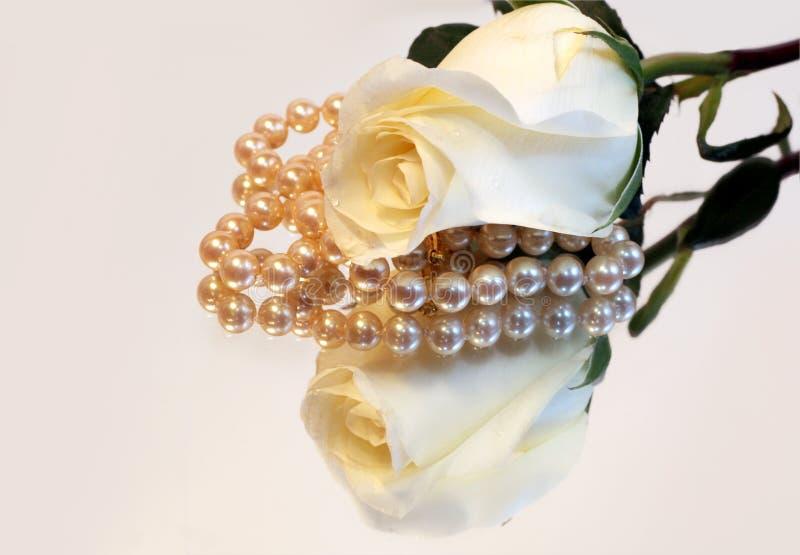 Weiße Rosen-und Perlen-Reflexion lizenzfreie stockfotografie