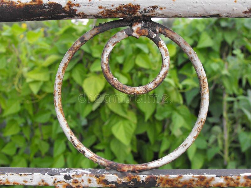 Weiße rostige metallische Geländerdocke, die einen Garten übersieht stockbild