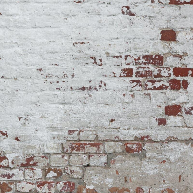 Weiße rote Retro- Backsteinmauer-Tünche-Rahmen-Hintergrund-Beschaffenheit stockfotografie