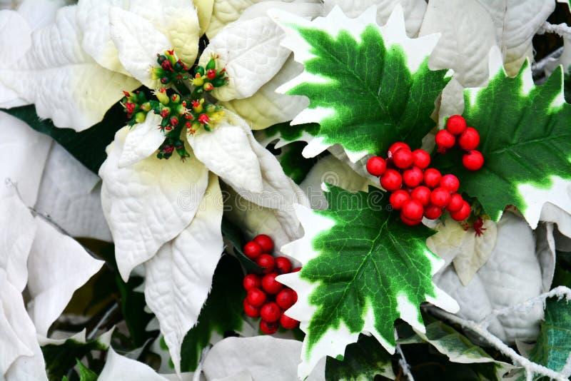 Weiße rote Winterblumen und Blätter, romantischer Blumenhintergrund lizenzfreies stockfoto