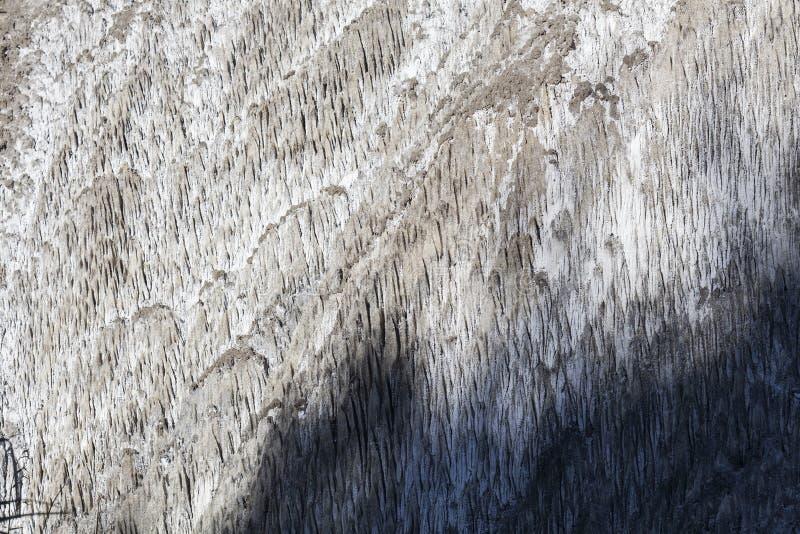 Weiße Salzbildung nahe einem gesalzenen Frühling in Parajd, Rumänien lizenzfreie stockfotografie