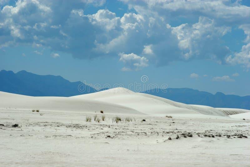Weiße Sanddünen stockbilder