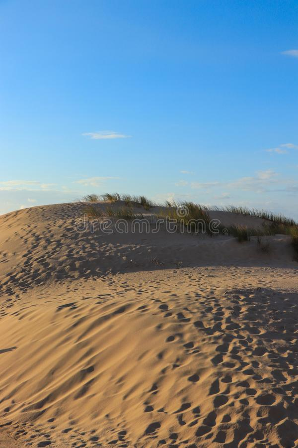 Weiße Sanddünen in einem Strand lizenzfreie stockfotografie