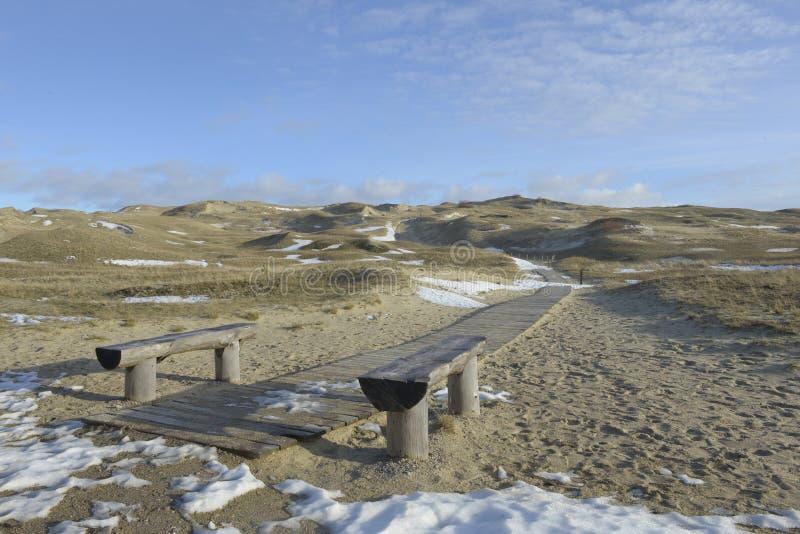Weiße Sanddünen im Winter lizenzfreie stockfotografie
