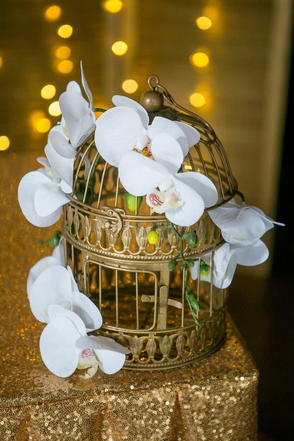 Weiße schöne Orchidee auf einem goldenen Käfig Defocused Lichtgirlanden auf dem Hintergrund Hochzeit oder Hauptdekor lizenzfreie stockfotos