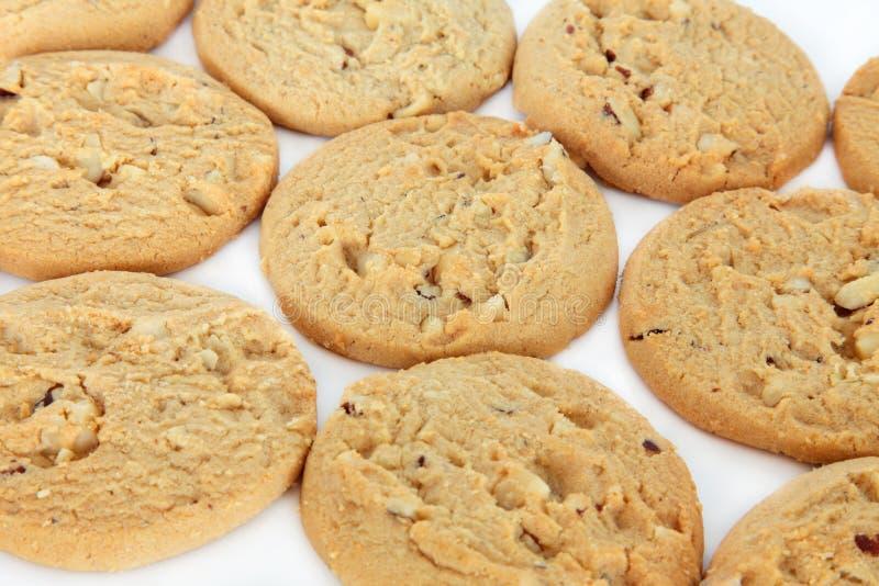 Download Weiße Schokoladenkekse stockfoto. Bild von golden, frucht - 26367488