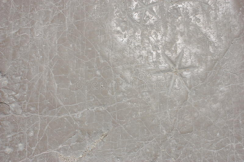 Weiße Steinbeschaffenheit stockfotografie