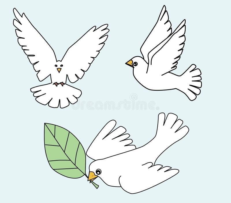 Weiße Taube, weiße Taubenvogelillustration lizenzfreie abbildung