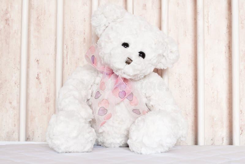 Weiße Teddybärnahaufnahme lizenzfreies stockbild