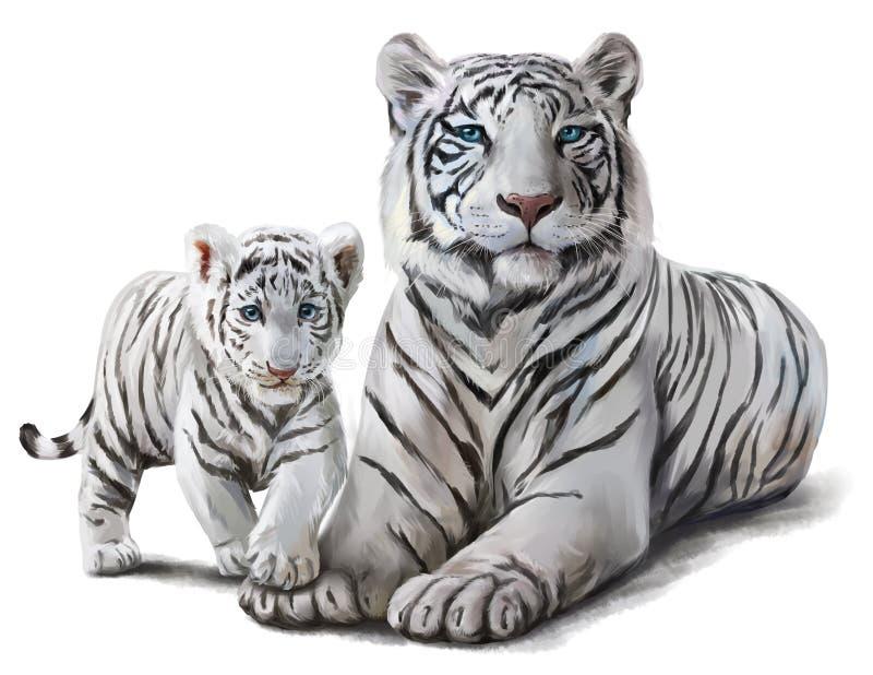 Weiße Tiger stock abbildung