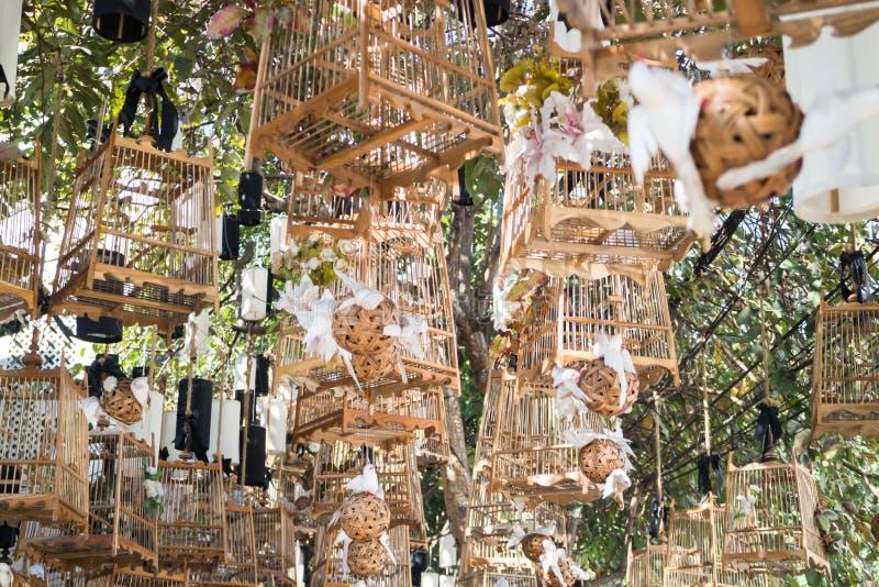 Weiße Vögel aus ihrem leblosen Konzept der Käfige heraus, Foto auf Lager stockfoto
