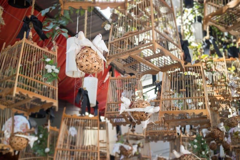 Weiße Vögel aus ihrem leblosen Konzept der Käfige heraus, Foto auf Lager lizenzfreie stockbilder