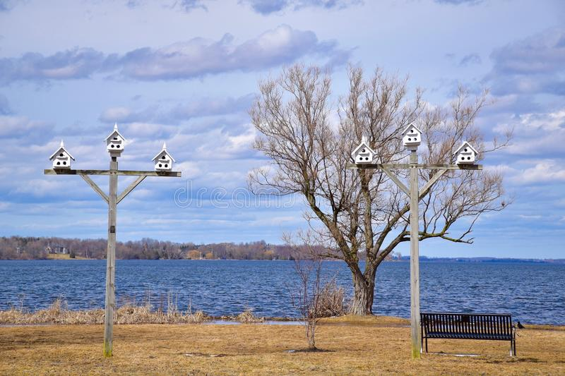 Weiße Vogelhäuser auf großen Polen entlang Lakeshore lizenzfreie stockfotos