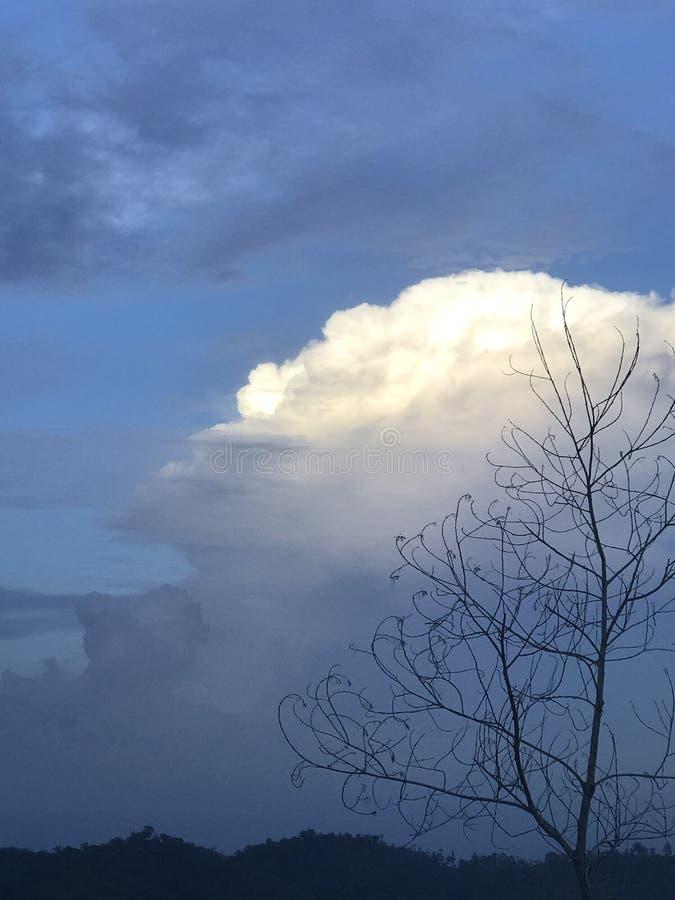 Weiße Wolken stockfotos