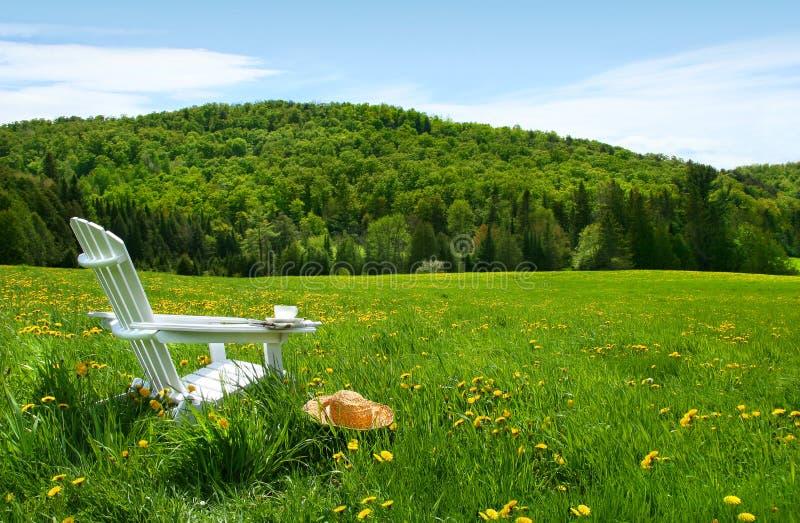 Weißer adirondack Stuhl auf einem Gebiet des hohen Grases stockfotos