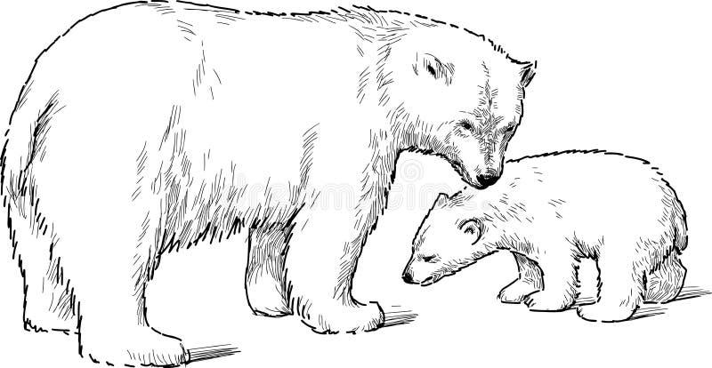 Weißer Bär mit Jungem vektor abbildung
