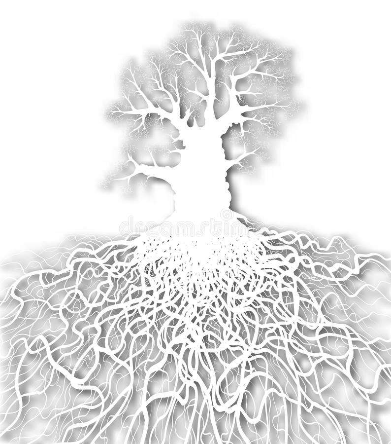 Weißer Baum vektor abbildung