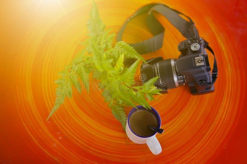 weißer Becher des selektiven Fokus auf dem Holztisch gegen Blatt und Kamera mit undeutlichem Sonnenaufflackernhintergrund stockbilder