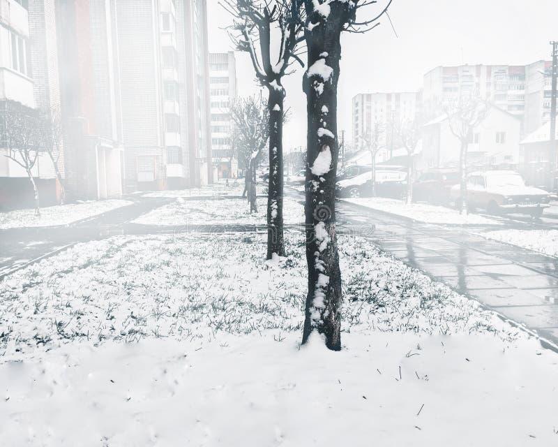 Weißer Berg in Spanien Schnee auf den Bäumen Nebel und Kälte Weihnachtszeit-Kopienraum stockfoto