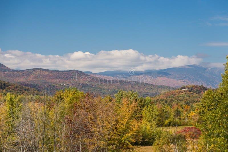 Weißer Bergstaatlicher wald im Herbst, New Hampshire stockbilder