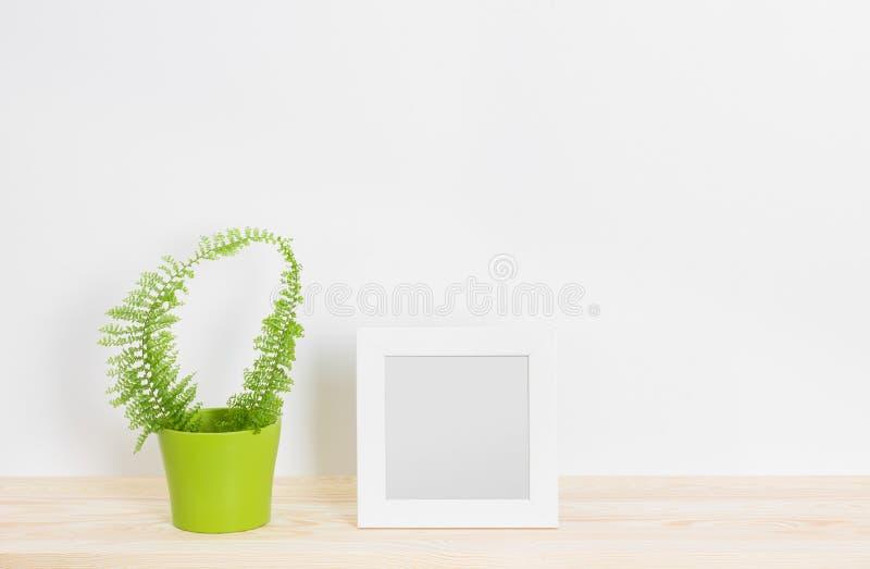 Weißer Bilderrahmen und Farn im grünen Topf lizenzfreies stockfoto