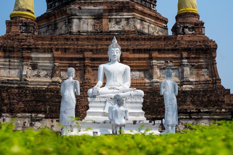 Weißer Buddha auf Pagodenhintergrund stockfotografie