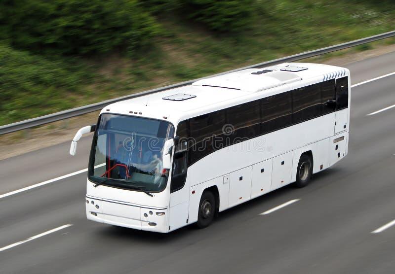Weißer Bus lizenzfreies stockbild