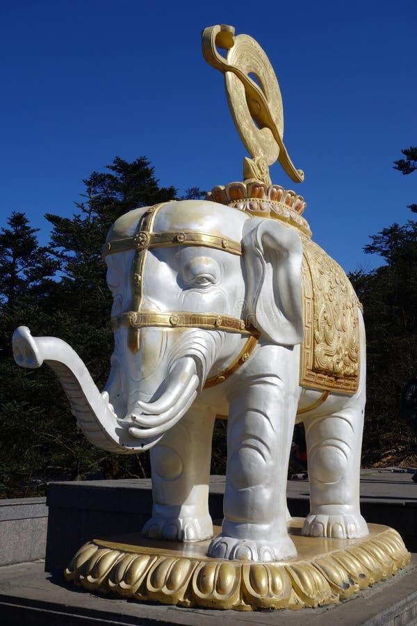 weißer Elefant an M.Ü. Emei lizenzfreie stockfotos