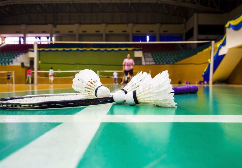 Weißer Federball auf dem grünen Boden stockfoto