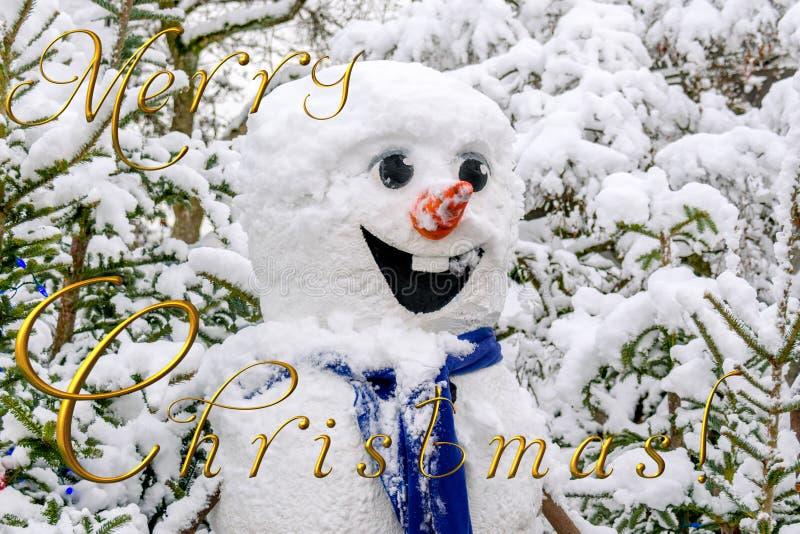Weißer fröhlicher Schneemann mit einer Karottennase, unter dem schneebedeckten g stockfotografie