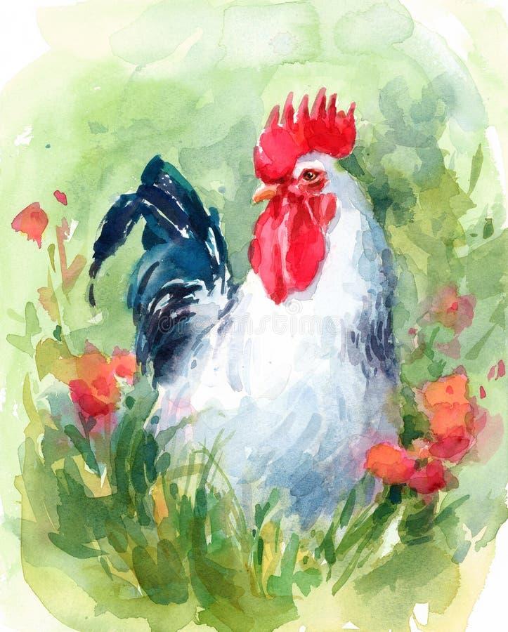 Weißer Hahn-Bauernhof-Vogel umgeben durch die Blumen Aquarell-Illustration handgemalt lizenzfreie abbildung