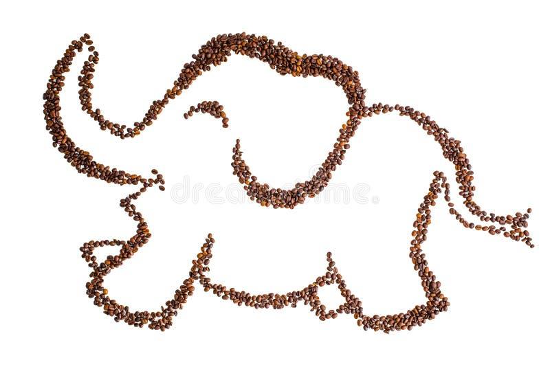 Weißer Hintergrund der Kaffeebohne ist dargestellter Elefant lizenzfreie stockfotos